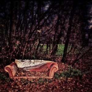red-couch-66819