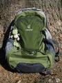 backpack-499000_1280