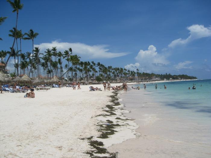 beach-1035862_1920